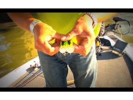 レアリスクランク M65テスト動画2