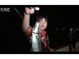 ライトワインドで狙うアジ実釣動画が公開