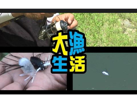 大漁生活 Vol.75