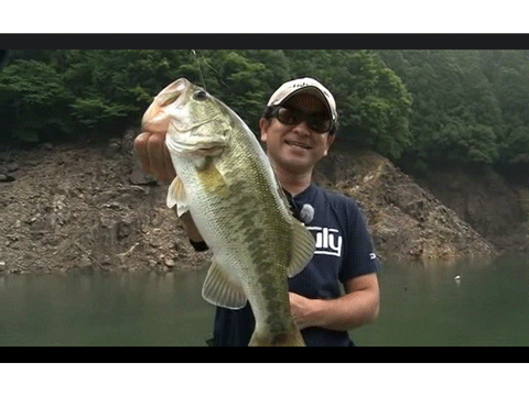 THE STRONG POWER BAIT Vol.75公開