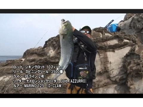 ショアジギングで狙うシイラ――massimoTV Vol.44(動画)