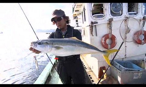 ボーダレス 380M-Tで釣るシーバス、AR-C TYPE XX動画などシマノTV更新_004