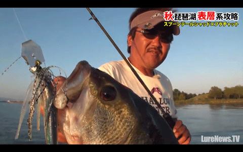 ノリーズ「フラチャット」をメインに琵琶湖を攻略(動画)