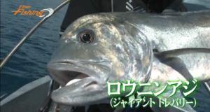 ダイワ FISHING ch.「ポンペイ島でGTのキャスティングゲーム」など2本更新
