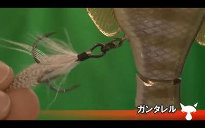 ジャッカル「ガンタレル」――ギル型ジョイントベイトが熱い!_004