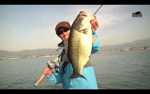クランキングで狙う春のブラックバス in 琵琶湖(動画)_001