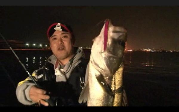 フィールで狙うバチ抜けシーバス in 泉南――massimoTV(動画)