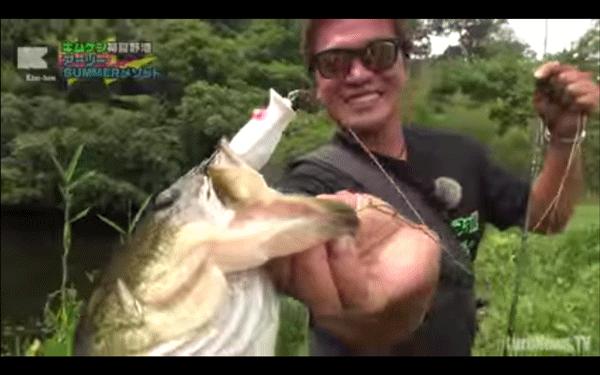 チガークローなどを使ってキムケンが初夏の野池のバスを攻略(動画)