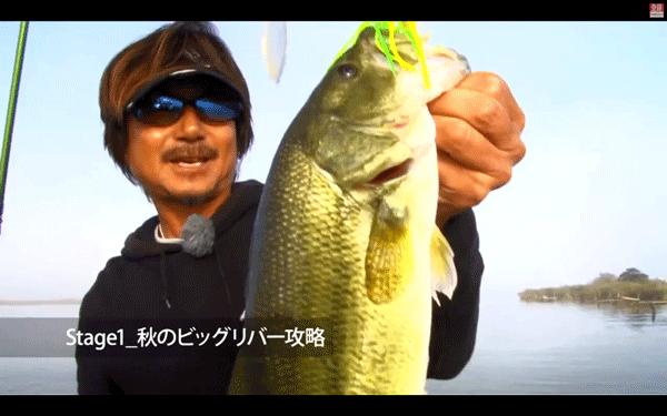 スピナーベイト講座(田辺哲男)を見てスピナーベイトをマスターだ!
