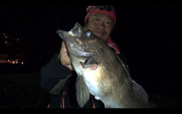 ガルプSWミノー&SWベビーサーディンで尺メバルを捕獲!(動画)