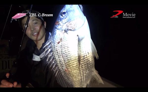 ジップベイツ「ZBL シーブリーム」で浜名湖のチヌを攻略!(動画)