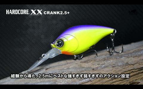 ハードコアXXクランク&バイブをプロスタッフが解説&実釣(動画)_002