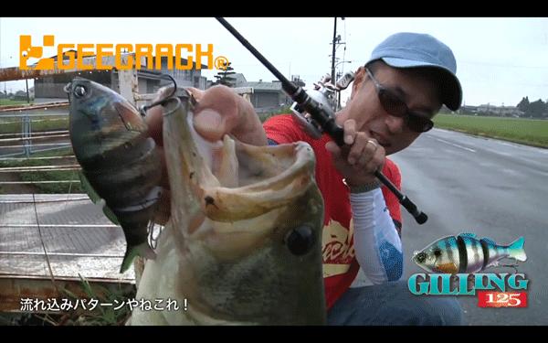 ラジャボーン&ギリング125で大江川水系のバスを攻略!(動画)