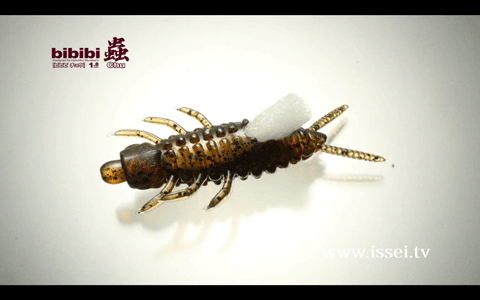 一誠「ビビビ蟲(ビビビチュウ)」を村上晴彦さんが解説(動画)_002