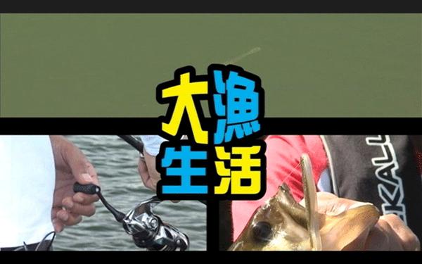 川島勉がクロステールシャッド ロボ等を使って亀山ダムを攻略(動画)