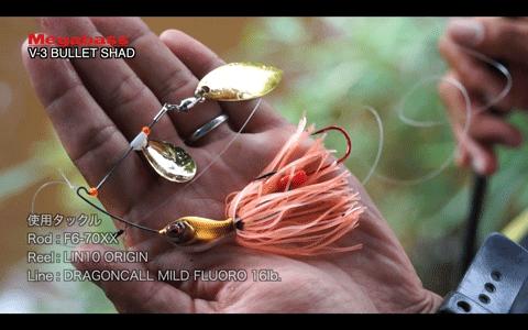ジャミラなどメガバスルアーで楽しむ野池オカッパリ!(動画)_004