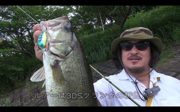 台風前はよく釣れるって本当?――釣りニンジャのぶらぶら旅(動画)