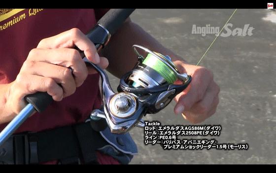 エメラルダスAGS 86Mを使って児島玲子がエギング&Lショアジギ(動画_002