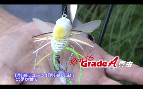 真虫(DUO)を使った秋の虫パターンを解説&実釣(動画)