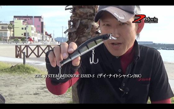 ザブラシステムミノー15HD-Sで日間賀島のシーバスを攻略(動画)