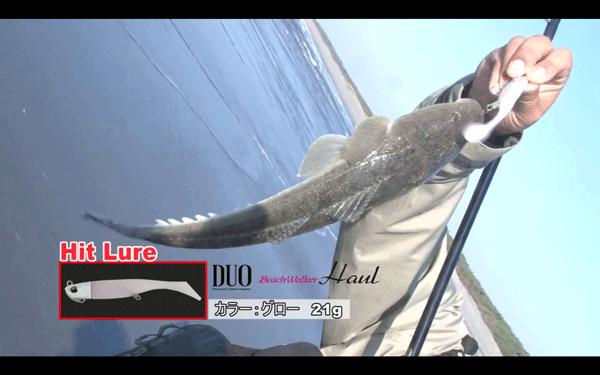 ビーチウォーカーハウルで遠州灘のフラットフィッシュを攻略!(動画)_001