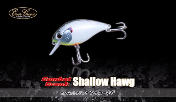 evergreen_shallow_hog_001