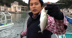 初場所で釣果をあげるためのコツとショートロッドの利点を解説!(アジング動画)