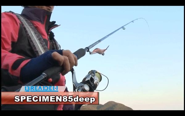 スペシメン85deep&エギマルで冬の大型アオリイカを攻略!(動画)_003