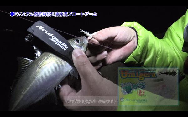Fシステム(釣り)の作り方・操作方法を実釣解説!アジ・メバル対応フロート(動画)