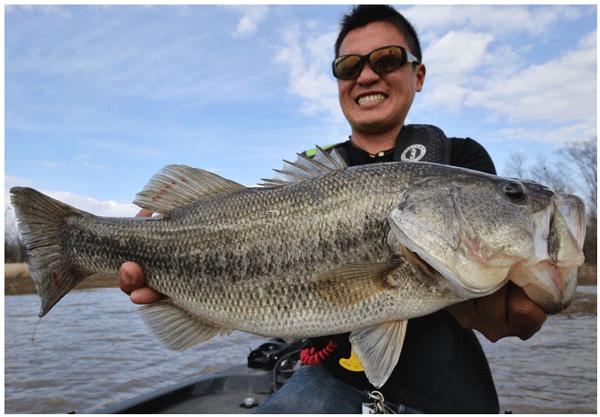 FISHING WEB MAGAZINE「BITE」がスタート!アレもコレも無料だタココラ!_005