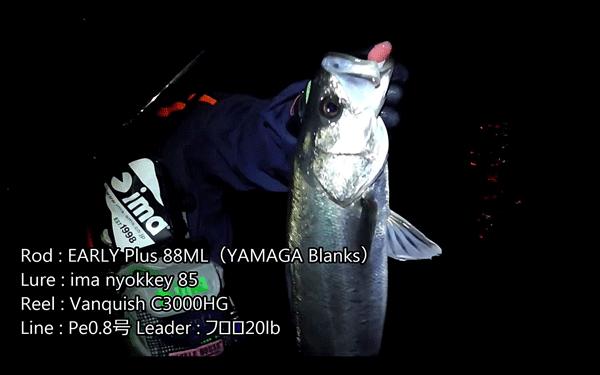 ヤマガ「アーリープラス88ML」でシーバスを狙う実釣動画が公開!