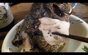 ブラックバスは釣ったら逃がす?いや食べる!な料理動画が凄い!_002
