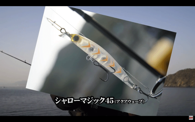 PSSS-53S プチプリッカー&ミノープラグでメバルを攻略(動画