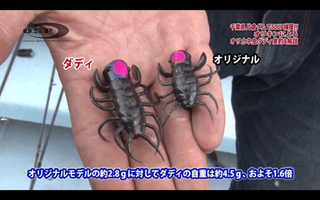 オリカネ虫ダディで50UPをキャッチ!使い方や特徴を実釣解説(動画)_002