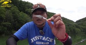 ベビーシャッドFC RiseUp(ライズアップ)登場!浮かせて喰わせる!
