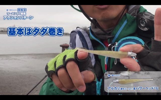 シーバスをワームで釣るための使い方、使いどころを解説!