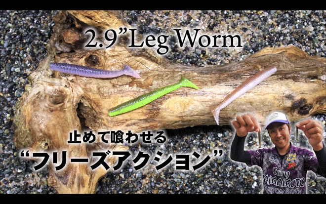 レッグワーム 2.9インチのカラー_005