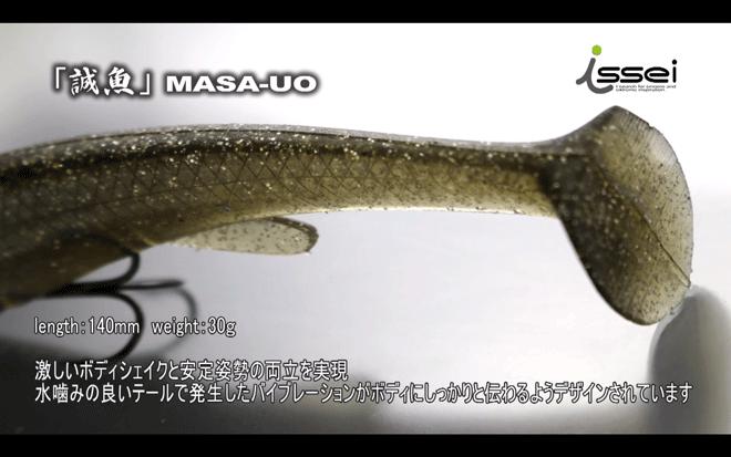 マサウオ(誠魚)のテール