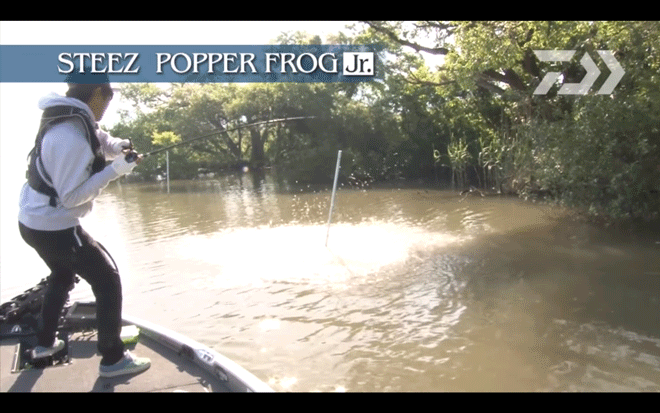 daiwa_steez_popper_frog_jr_002