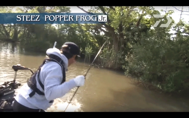 daiwa_steez_popper_frog_jr_004