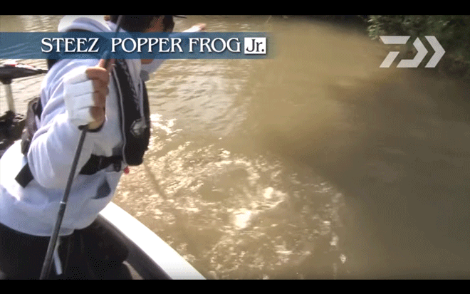 daiwa_steez_popper_frog_jr_005