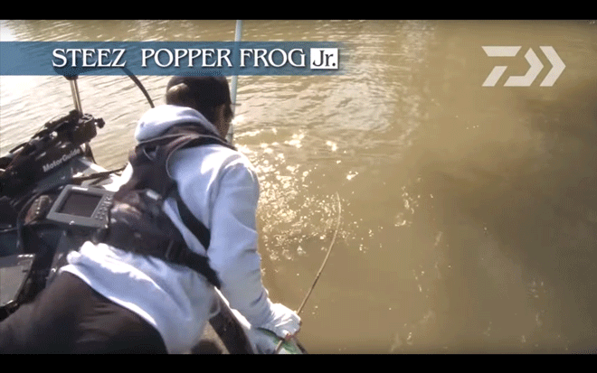 daiwa_steez_popper_frog_jr_006