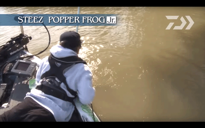 daiwa_steez_popper_frog_jr_007