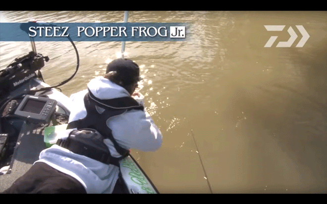 daiwa_steez_popper_frog_jr_008