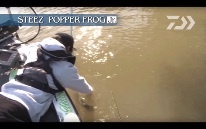 daiwa_steez_popper_frog_jr_009