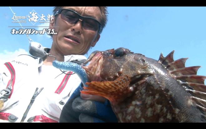 根魚玉(ねうおだま)でハタ系ロックフィッシュ攻略!特徴と使い方を解説_001