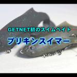 getnet_burikinswimmer_000
