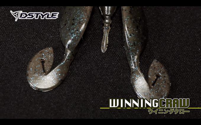 dstyle_winningcraw_006